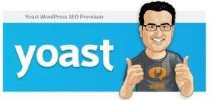 Как удалить уведомление о лицензии из wordpress-seo-premium?